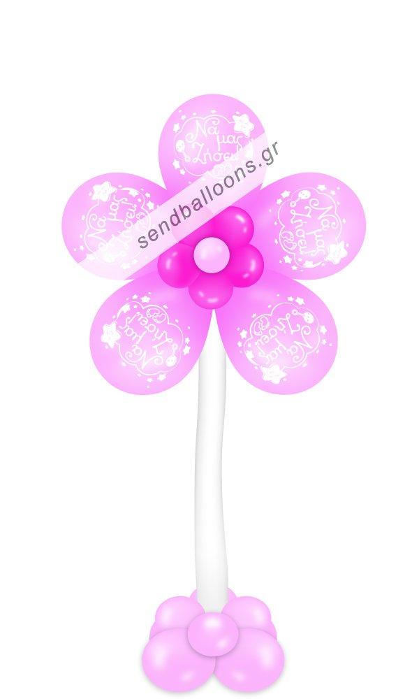 Λουλούδι γέννησης ροζ, να μας ζήσει